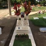 tumba de diomedes diaz restaurada 2